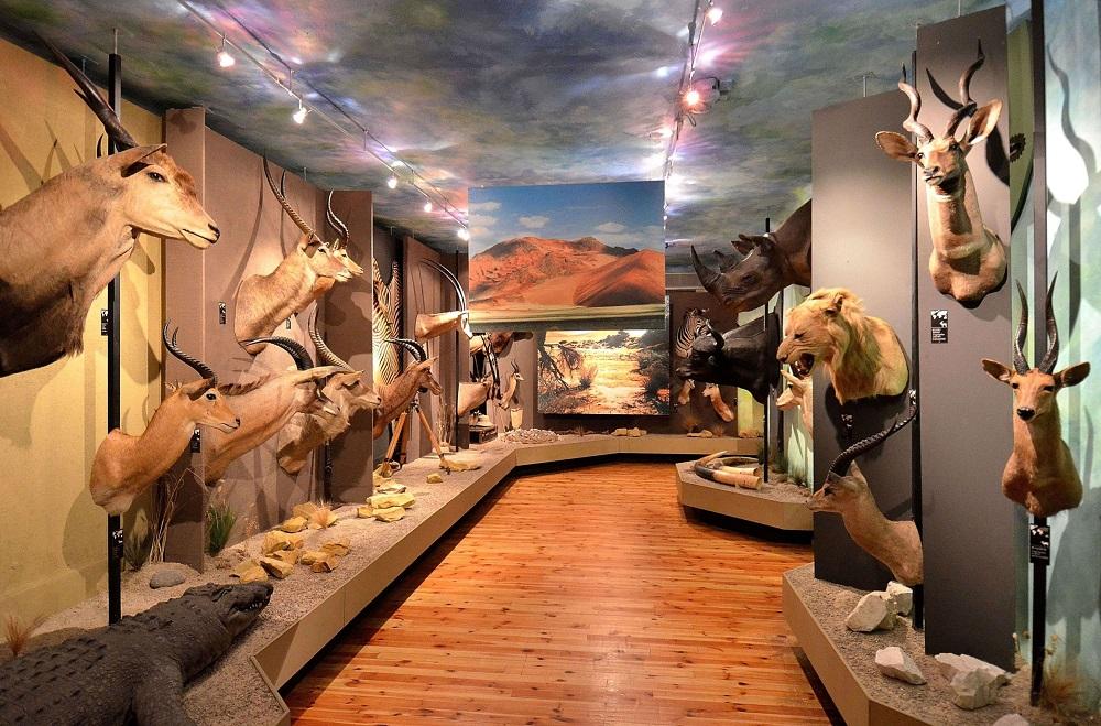 Muzeum Łowiectwa i Jeździectwa